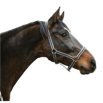Pferdehalfter HIPPO aus Nylon, Gr. 00 grau/schwarz